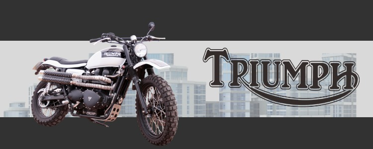 Triumph banner